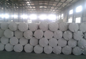 Hot Sale Staple Fiber Needle-Punched Geotextile pictures & photos