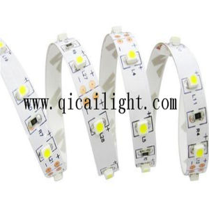 LED Decorative IP68 0.2W 2835 SMD Flexible LED Strip pictures & photos