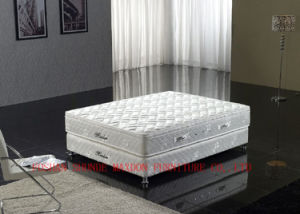 Spring / Healthy Mattress / Soft Bed (MA08) pictures & photos