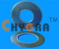 Sealing Gasket Expanded Graphite Cut Gasket (G2100) pictures & photos