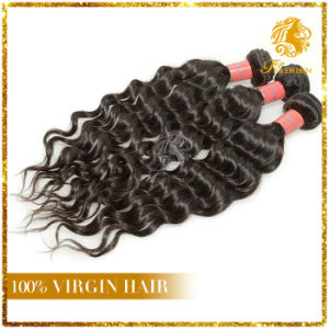 Virgin Hair Water Wave Brazilian Human Hair Extension (TFH- 39) pictures & photos