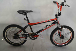 Freestyle Bike (WT-2076) pictures & photos