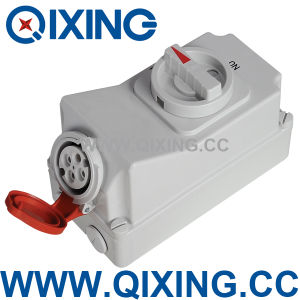 Socket with Switches and Mechanical Interlock (QX5100) pictures & photos