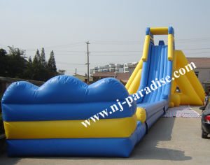 Outdoor Inflatable Giant Water Slide for Amusement Park for Adult/Kids