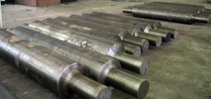 Forging Step Shaft