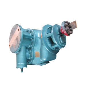 New Style Horizontal Twin Screw Pump pictures & photos