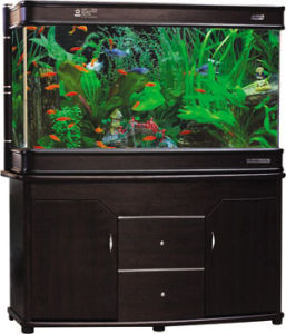 Well-Received SA Series Glass Fish Tank (SA Series)