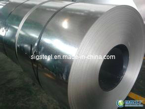 Profession Manufacture Electro Galvanized Steel for Industry (0.3mmx1220mm SGCC) pictures & photos