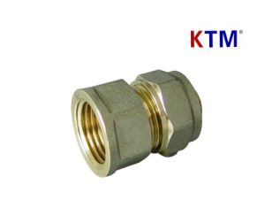 Fittings in Brass for Pex-Al-Pex, PE-Al-PE Pipe - Straight Female Connector pictures & photos