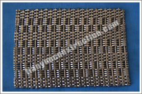 Stainless Steel Decorative Wire Mesh (TYC-770) pictures & photos