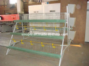 Chicken Cage / 120 Layer Cage (OL-11) pictures & photos
