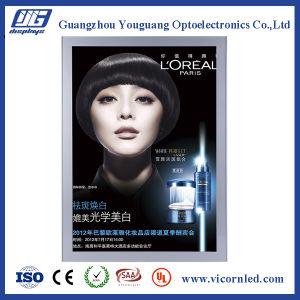 Hotsale: Aluminum Magnetic LED Light Box-SDB20