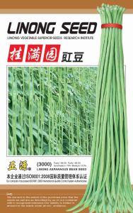 Gua Man Yuan Cowpea Seeds (3000)