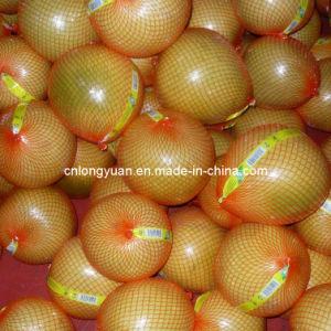 Fresh Pomelo pictures & photos