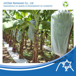 UV Treated Non-Woven for Fruit Cover, Banana Bag pictures & photos