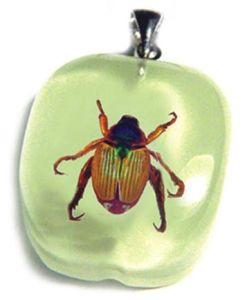 Insect Necklace-Bean Beetle