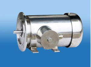 IEC Standard Stainless Steel Motor pictures & photos