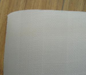 Monofilament Filter Cloth (TYC-PP2676) Filter Fabric for Liquid Filtration pictures & photos