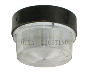 Factory Luminaire (QYTG138-B) pictures & photos