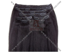 Clip in Human Hair Extension (AV-HE022) pictures & photos
