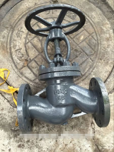 Stainless Steel Globe Valve (PY40, dn50, dn80, dn100) pictures & photos