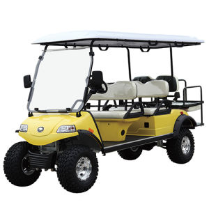 Electric Lifted Car/Cart/Buggy, Sightseeing Car, Utility Vehicle (DEL2042D2Z, 4+2-Seater) pictures & photos