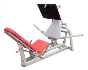 Fitness Equipment / Gym Equipment / 45 Degree Squat Press (SM25) pictures & photos