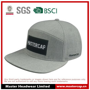 Alternative Panel Snapback Hat with Applique Embroidery