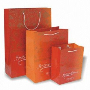 Custom Shopping Bags (HPSB-0029)