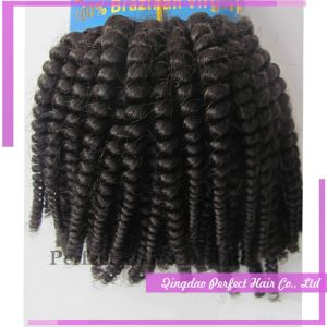Virgin Brazilian Hair Remy Human Tiger Curly Hair Weft pictures & photos