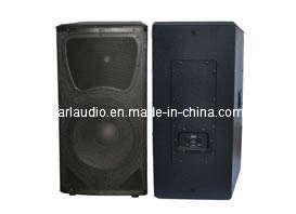Professional Speaker/PA Audio Speaker (WCN)