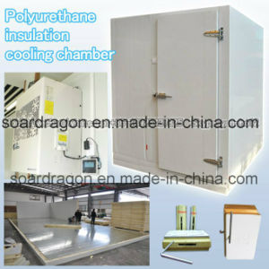 Polyurethane Insulation Cooling Chamber Room pictures & photos