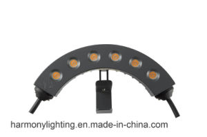 IP65 220V 6W Outdoor LED Spot Lights pictures & photos