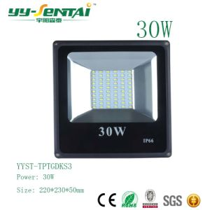 Ce RoHS IP65 30W Building Lighting Floodlight pictures & photos