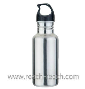 Water Bottle, Stainless Steel Sports Bottle (R-9051) pictures & photos