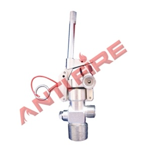 Wheeled CO2 Fire Extinguisher Valve, Xhl01016 pictures & photos