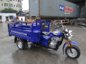 AAA Outdoor /Trike/Three Wheel Motorcycle pictures & photos