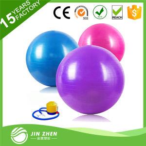 PVC Anti-Burst Gym Balance Ball with Foot Pump
