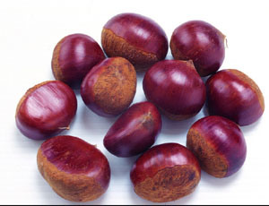 2015 Chinese Organic Fresh Chestnut pictures & photos