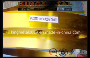 BS 3293/BS 4504 Forged Flanges for Pn2.5/6/10/16/25/40 pictures & photos