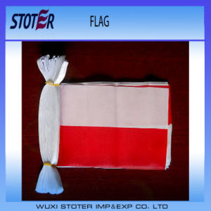 Custom Printing 100%Polyester Bunting Flags
