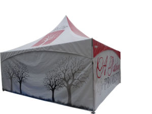 Pagoda Business Gazebo Tent for Exhibition / Trade Show pictures & photos