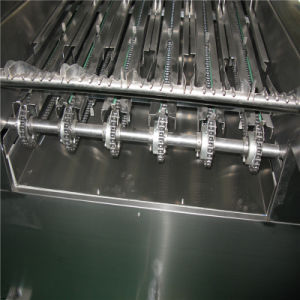 Instant Noodle Cup Capping/Packaging/Sealing Machine (RZW-10 Series) pictures & photos