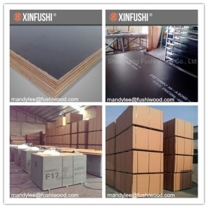 as 6669 F17 Formwork Plywood for Australia Market (1200*2400*17mm) pictures & photos