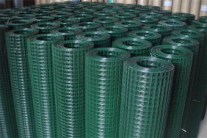 Welded Wire Mesh Supplied by Good China Manufacture Factory Supplier pictures & photos