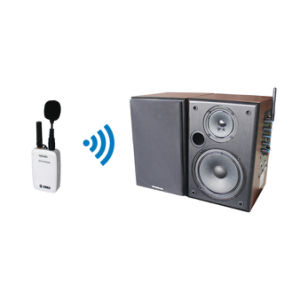 Professional Wireless Mini Microphone and Brown Speaker System pictures & photos