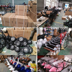 Three Wheels Electric Tricycle with Ce and RoHS pictures & photos