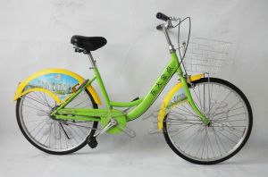 Public Bicycles - Portable Type Bike pictures & photos