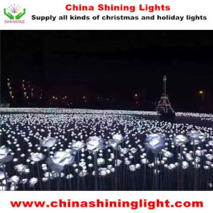 Holiday Party Hotel Garden LED Decoration Lights pictures & photos
