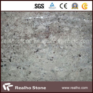 Exotic White Stone Bianco Antactico Granite Slab From Brazil pictures & photos